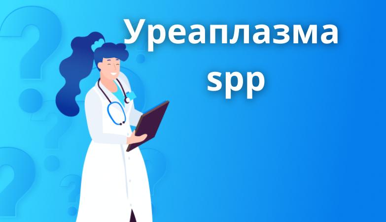 Уреаплазма spp: особенности заболевания